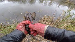 Кто то скинул в реку а я нашел на поисковый магнит