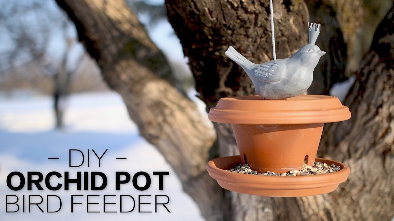Diy orchid pot bird feeder garden answer youtube - Why you should cook clay pots ...