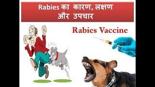 Gambar cover Rabies Symptoms and Treatment in Hindi