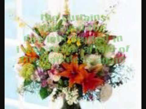 Owl City Hospital Flowers 2011 FULL SONG +LYRICS