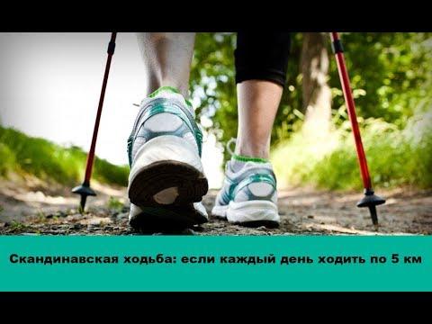Как правильно ходить скандинавской ходьбой чтобы похудеть