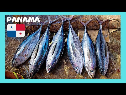 PANAMA CITY: Cleaning giant fish, the FISH MARKET (CENTRAL AMERICA)