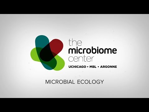 Microbial Ecology With Jack Gilbert