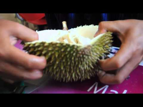 Ucok Durian - The Most Famous Durians in Medan North Sumatera