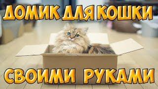 Самый простой домик для кота или кошки. домик для кота из коробки как сделать cat hause