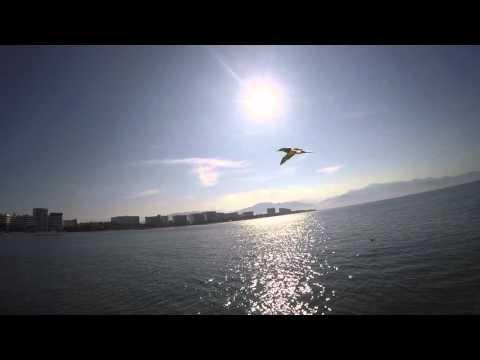 Puerto Vallarta - Islas Marietas-  Boat Birds Hunting GoPro HERO4