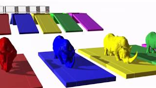 Learn Colors Animals For Children with Rhinoceros Animals Transporter With 3D Rhinoceros