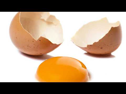 Almost 207 million eggs reviewed over salmonella fears