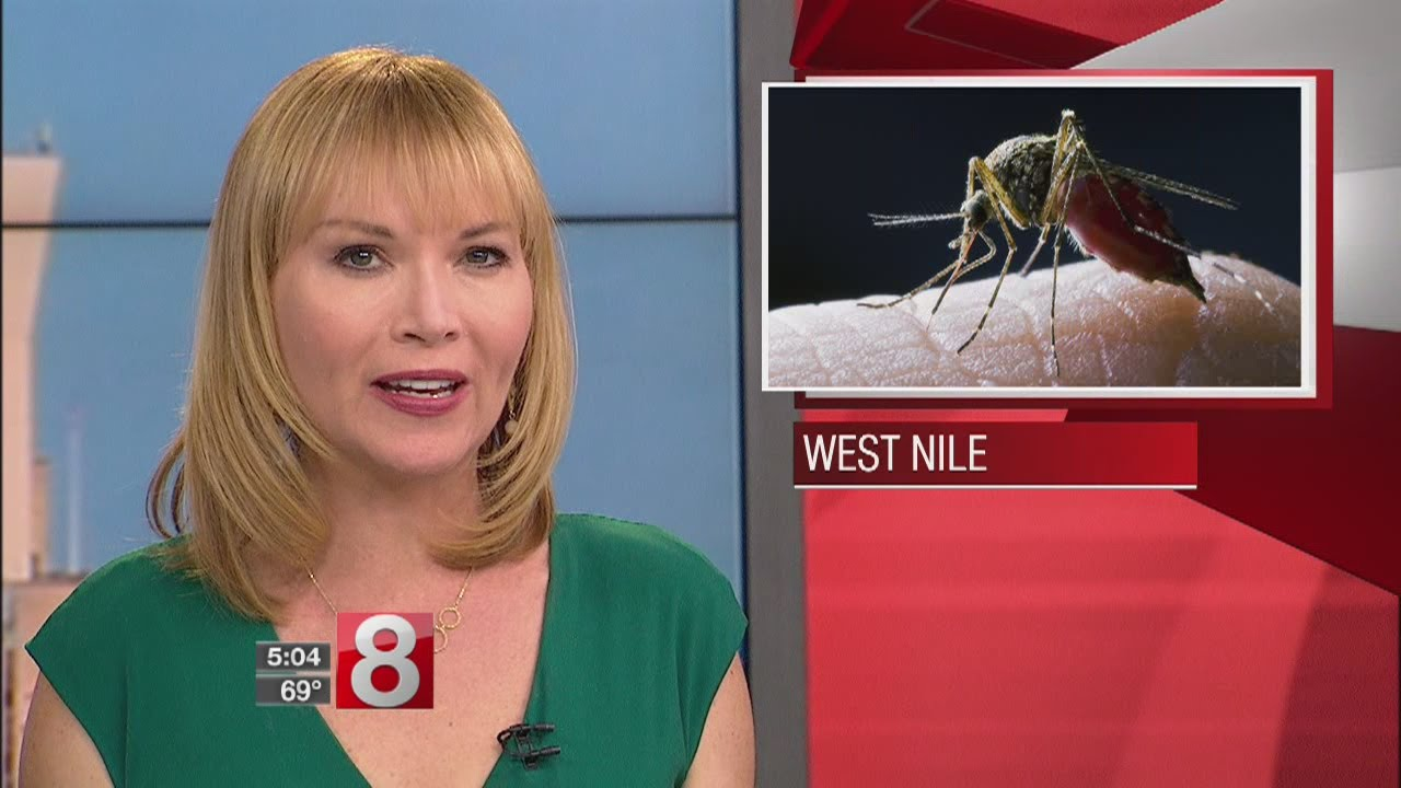 West Nile Virus Warning Issued By Greenwich Health Department