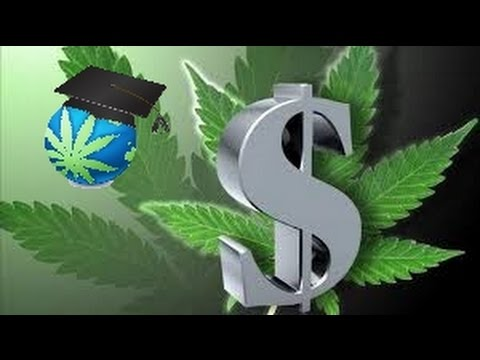 Does Legal Weed Cost More? - Analysis