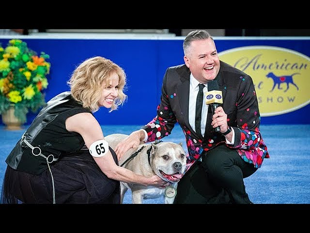 Preview - 2019 American Rescue Dog Show - Hallmark Channel