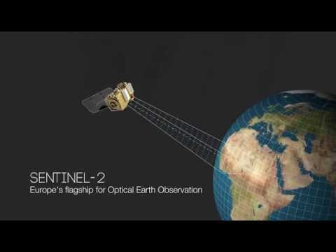 Sentinel-2 watches Earth's landmasses