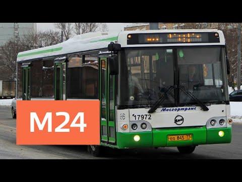 До столичных и подмосковных кладбищ запустят бесплатные автобусы - Москва 24