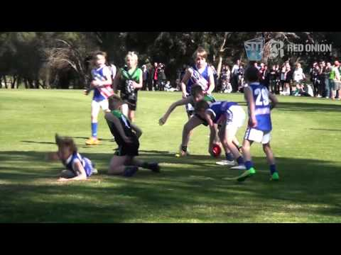 U11 West   Cheltenham JFC Green vs East Malvern Blue