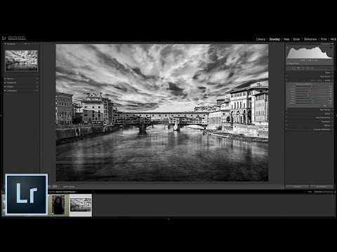 A Beginner's Guide to Creating Black & White Photos in Lightroom