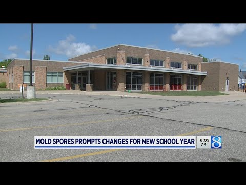 Holland Language Academy Closes Due To Mold Spores
