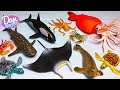 SEA ANIMALS IN WATER for Kids! LEARN OCEAN ANIMAL NAMES FOR CHILDREN WITH TOYS