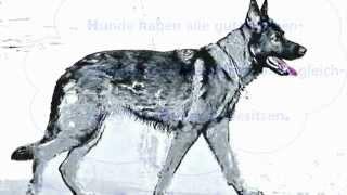 """""""Auf den Hund gekommen...""""  ( 3.Teil )"""