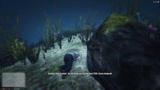 GTA V RP #3 - Podwodny świat...