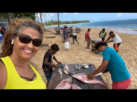 Shopping at the Fish Market | A Day in the Life in the Dominican Republic