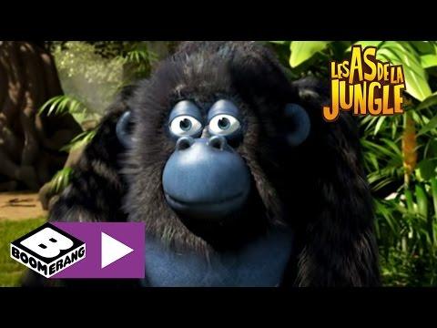Épisode 3 | Les As de la jungle : en direct | Boomerang