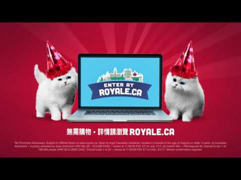 ROYALE CAN150 15 Cant