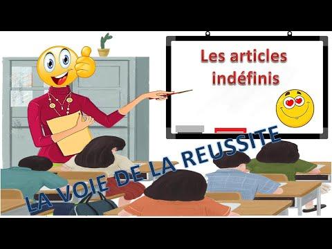 Apprendre le français avec Laura - les articles indéfinis thumbnail