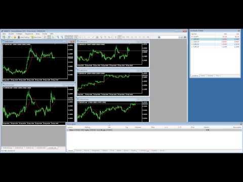 MetaTrader 5: High Speed Devisenhandel für Forex Daytrader - ECN und NDD inklusive