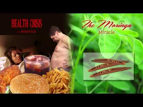 The Moringa Miracle