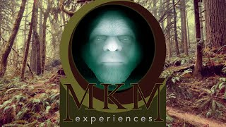 MKM EXPERIENCE 5 - The Creative Journey Within - Introduction Video