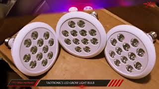 Best Led Grow Lights 2017? Best Led Grow Lights For Flowering