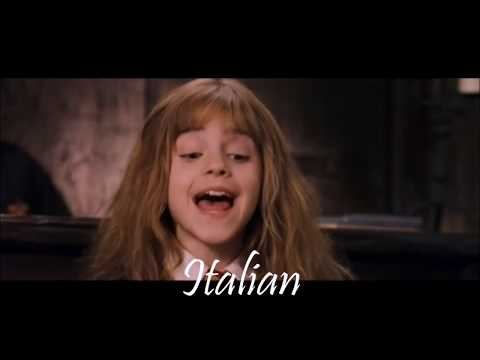 """""""It's leviOsa not levioSA"""" Hermione quote in 13 languages"""