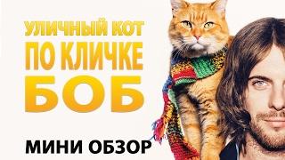 Уличный кот по имени Боб - Обзор фильма