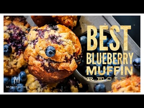 Best BLUEBERRY MUFFIN Recipe  - Munchkin Time