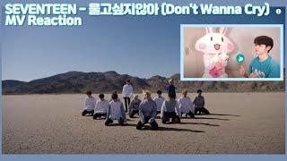 SUB) SEVENTEEN(세븐틴) - 울고 싶지 않아(Don't Wanna Cry) /KOREAN REAC…