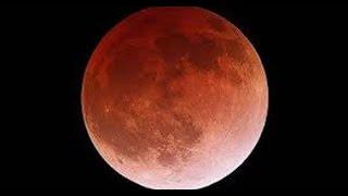 بالفيديو ..ظاهرة القمر العملاق تظهرفى مصر