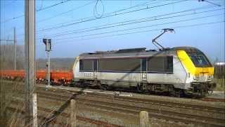 4 treinen in Schellebelle
