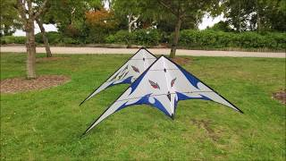Fearless II Sport Kite Sky Sport Design