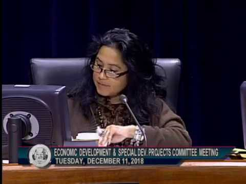 The Collaborative's Disparity Study Best Practices Presentation to City Council