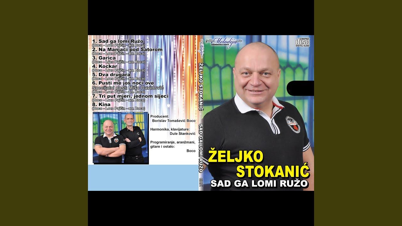 zeljko stokanic 2013
