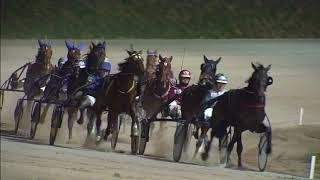 Vidéo de la course PMU PRIX MARCO DI JESOLO