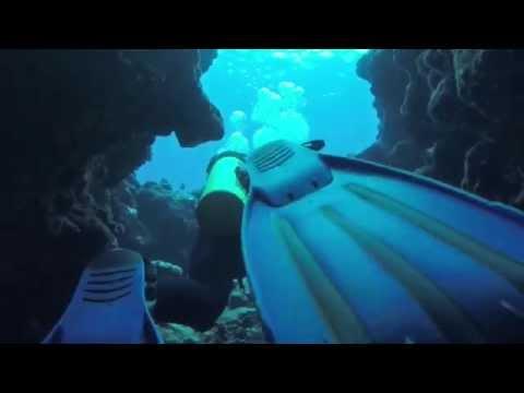 [Vlog] Mergulhando em Tonga