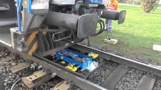 TMC-1 Trailing