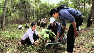 USAID Cambodia MSME Project - Forest Values - 2 PSAs - Khmer Language