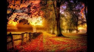 К нам приходит осень. ..