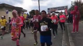やまねこマラソン2017