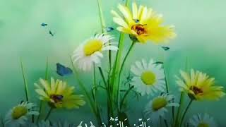 Download Video Al Qur'an Durat At Tin MP3 3GP MP4