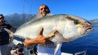 Bu Balığın Kaç Kilo Geldiğine İnanamayacaksınız !! / Giant Amberjack