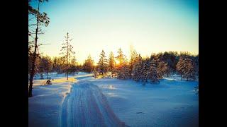 Вчера клевало и завтра будет Зимняя рыбалка на лесном озере