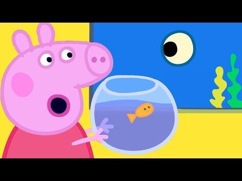 Peppa Pig en Español Episodios 🐳 Animals Marinos 🐳 Pepa la cerdita